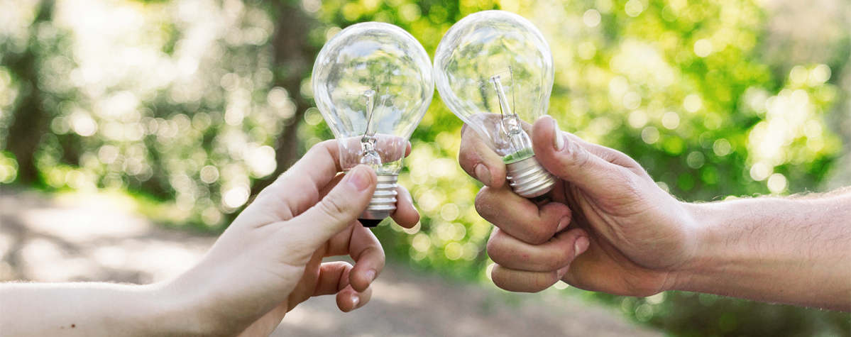 Birchwood Energy about page header with two lightbulbs